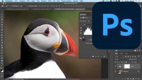 Adobe photoshop 2021 kurs
